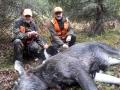 Pulliaisen Jouko ampui loukkaantuneen lehmän 15.10.17