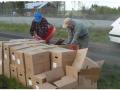 Asko Lipsanen ja Roi Arkko avaavat koivuntaimilaatikoita