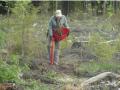 Roi Arkko istuttaa kaivurilla muokattuun maahan